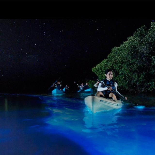 Kayak in Bioluminescent Bay at Night