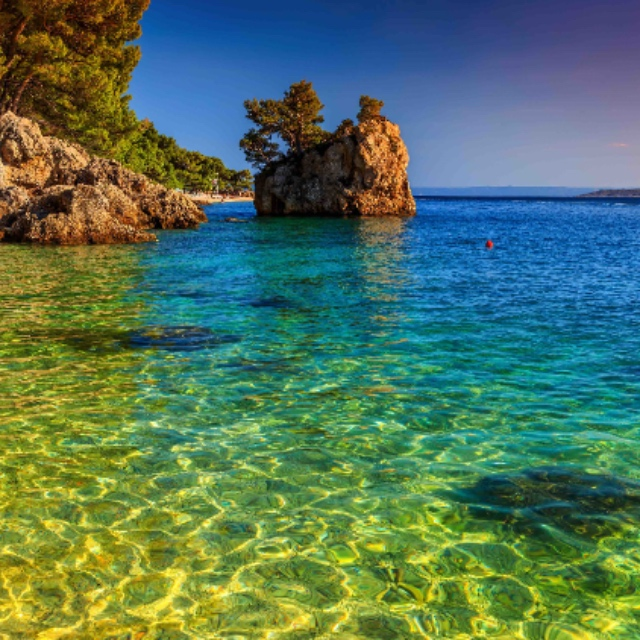 Take a Blue Lagoon Tour
