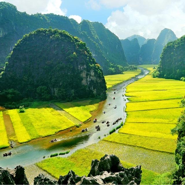 Sail through Tam Croc Rice Fields