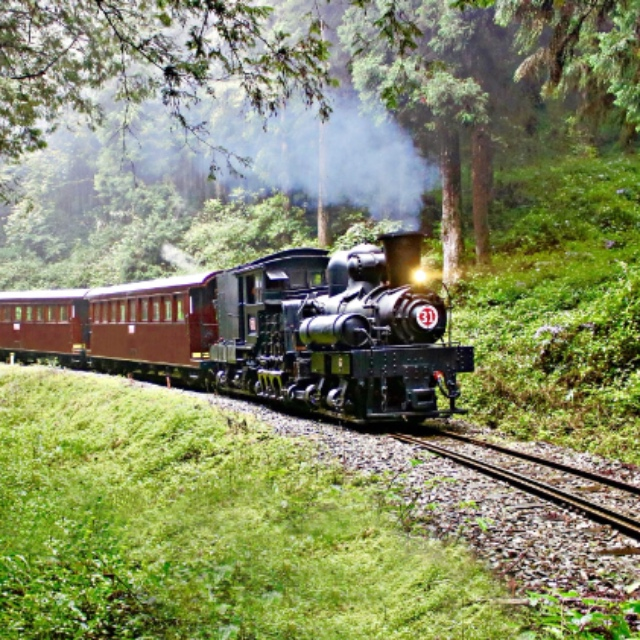 Ride the Alishan Forest Railway Line