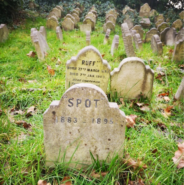 Visit the Pet Cemetery in Hyde Park
