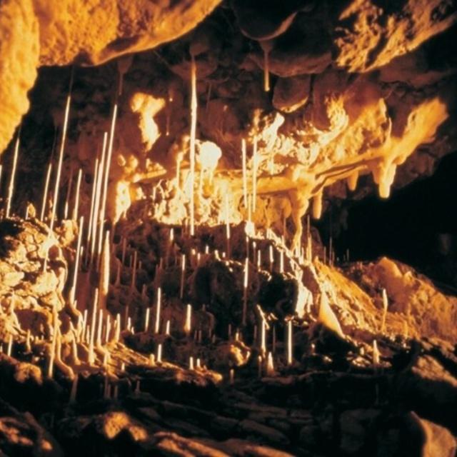 Grottes de Vallorbe