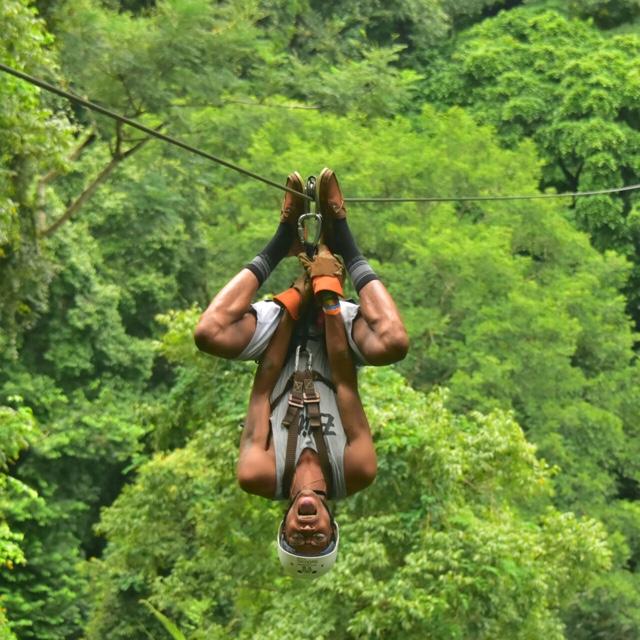 Zipline Through the Rainforest