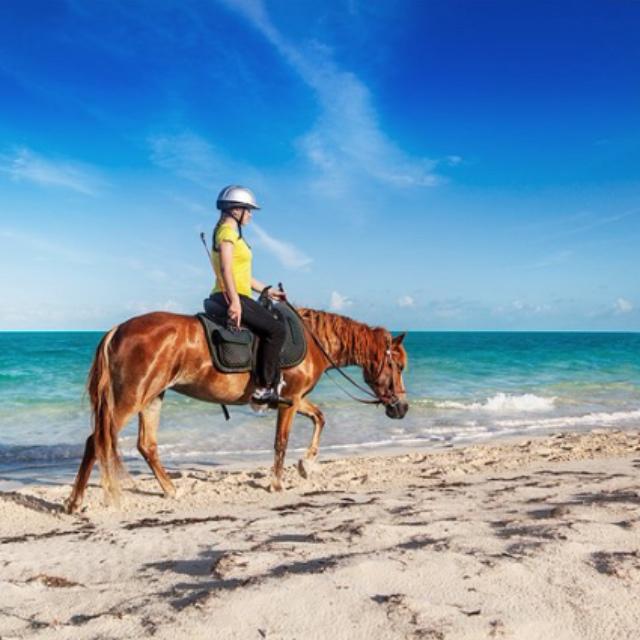 Horseback Riding in the Sea at Caicos Banks
