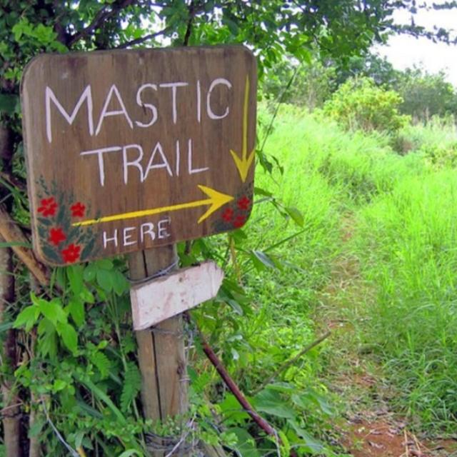 Hike the Mastic Trail