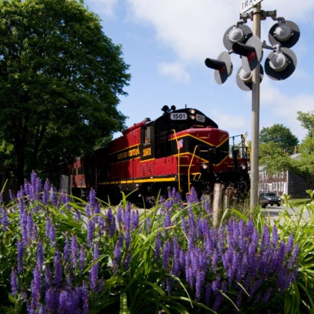 Ride the Cape Cod Central Railroad
