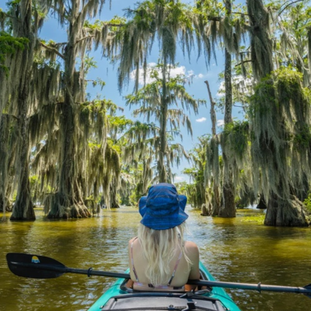 Kayak on the Bayou