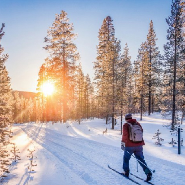 Cross Country Skiing in the Arctic