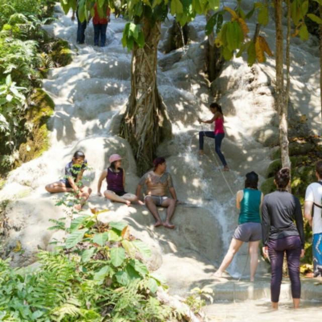 Walk Up Bua Tong Sticky Waterfall