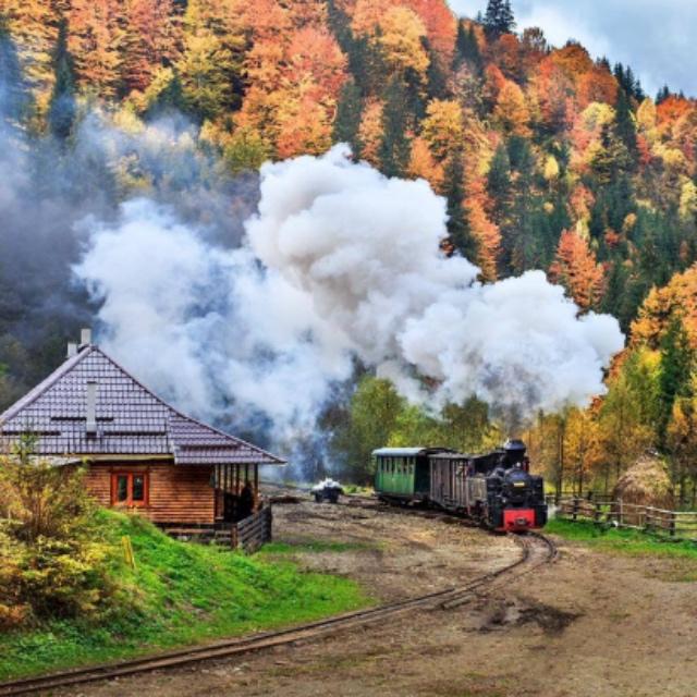 Fall Train Ride