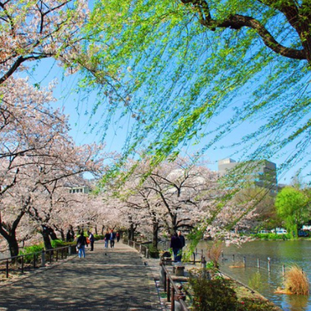 Ueno Park and Zoo
