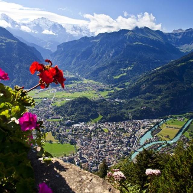Paraglide Over the Alps at Interlaken