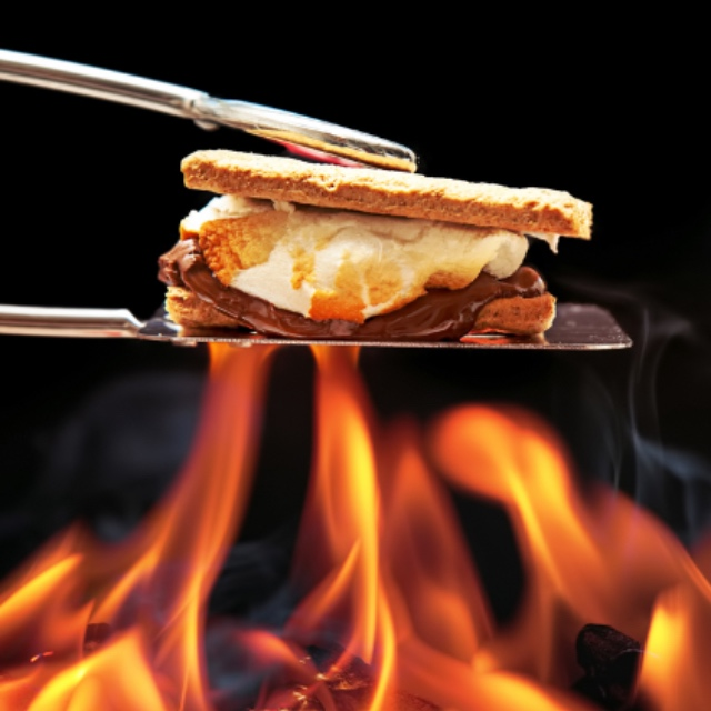 Build a Campfire and Toast Marshmallows