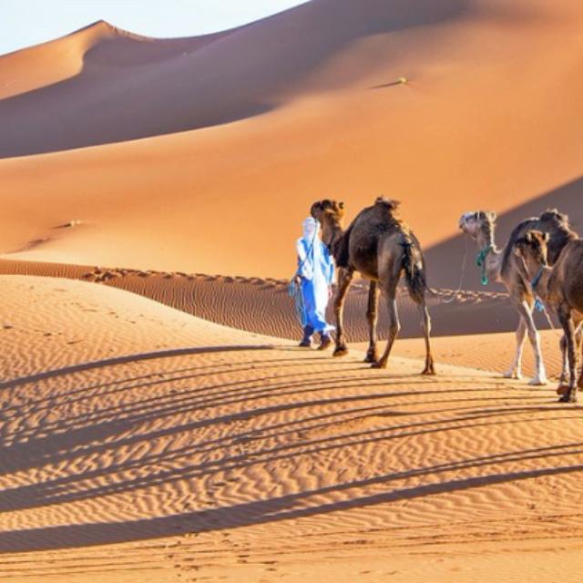 Dunes of Erg Chigaga