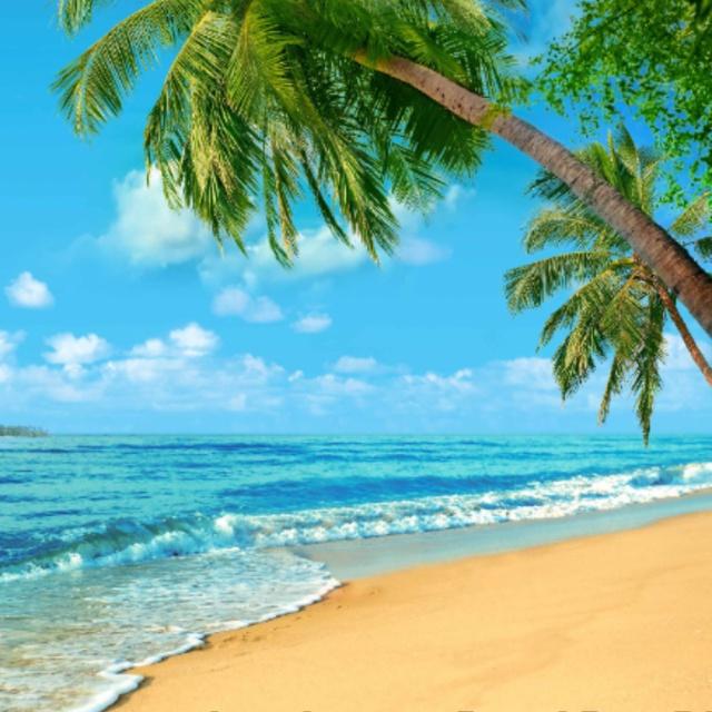 Go to the Beach