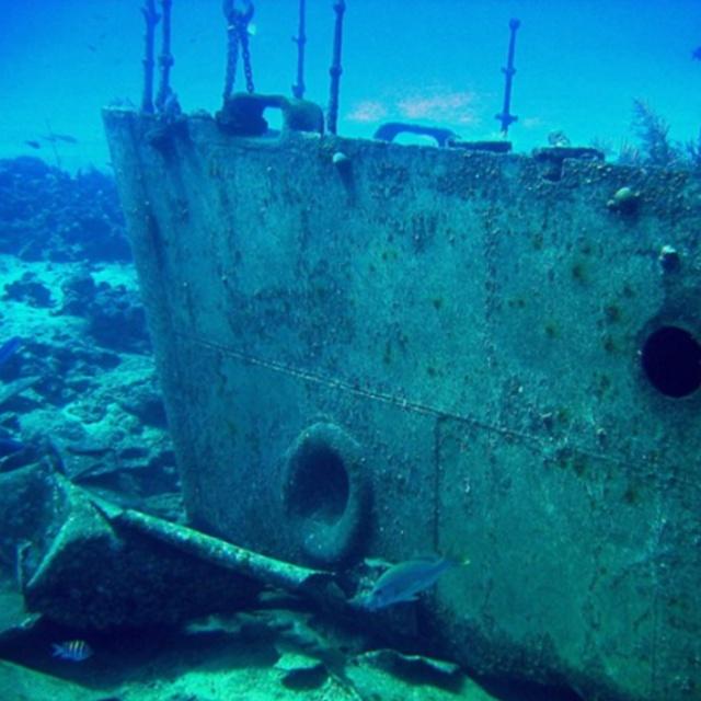 Experience the Underwater World in an Atlantis Submarine