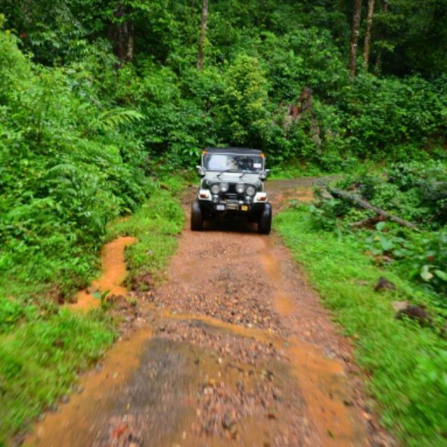 Jeep Jungle Safari Adventure