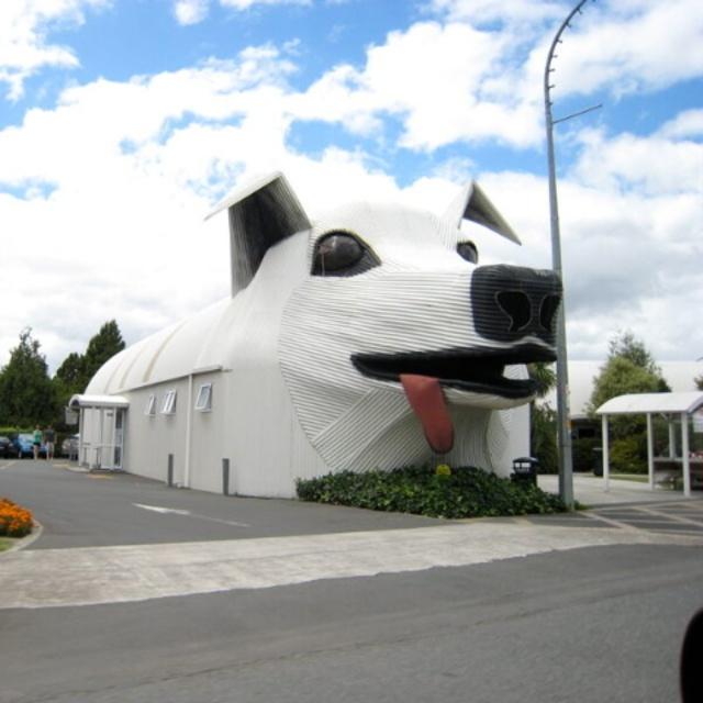 Big Dog and Sheep