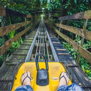 Ride the Alpine Slide