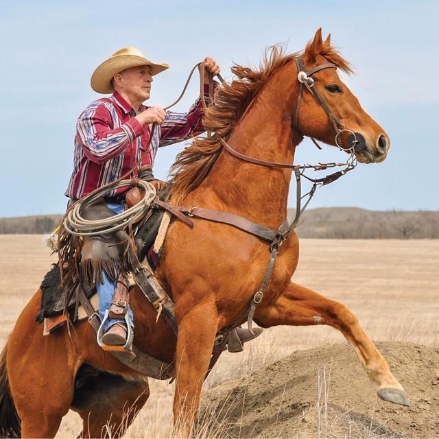 Estancia Acentura Ranch
