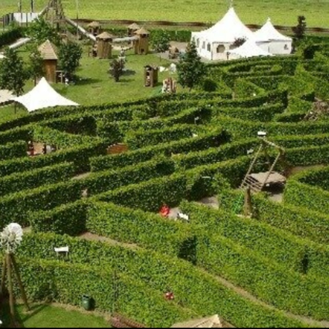 Evionnaz Adventure Labyrinth