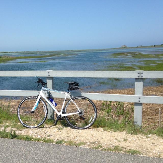 Shining Sea Bike Path in Falmouth