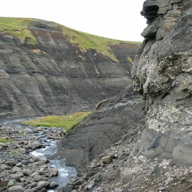Hunt for Fossils at Hallbjarnarstaðakambur