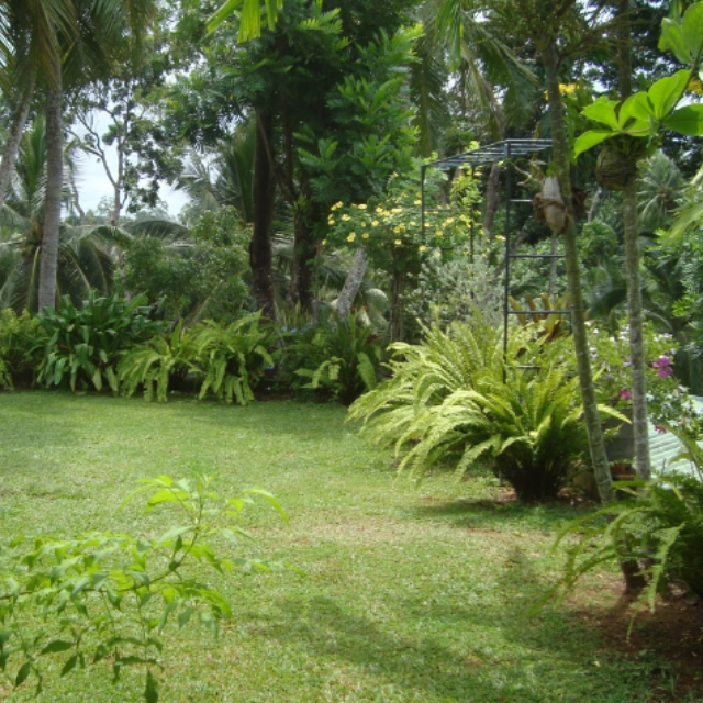 Sunnyside Botanic Gardens