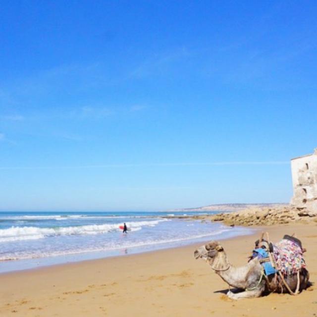 Windsurf at Sidi Kaouki