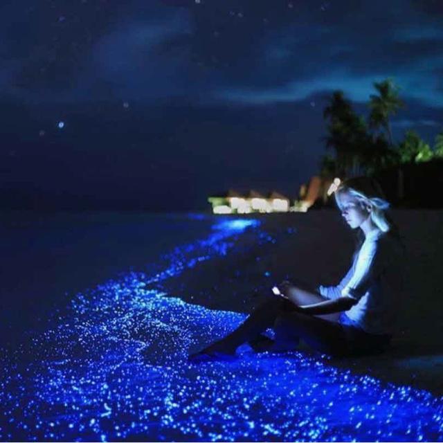 Explore the Sea of Stars