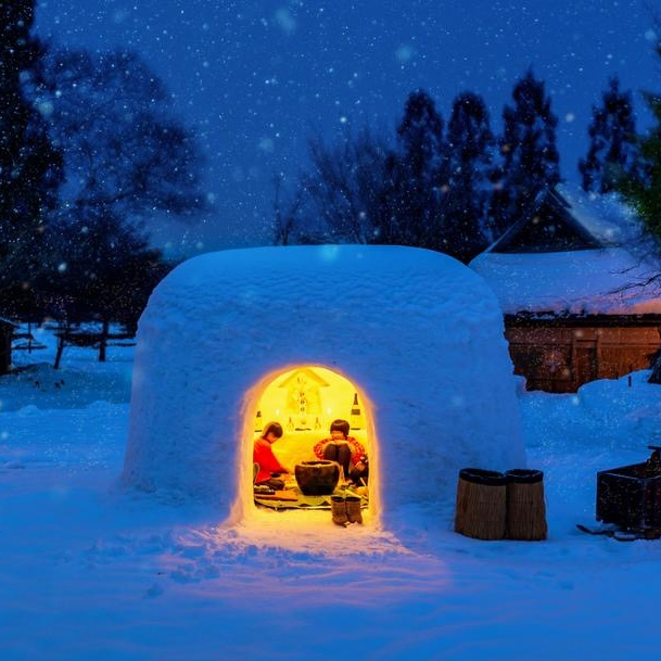 Sleep in a Igloo